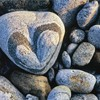Heart-shaped pebble on beach. South Uist, Scotland, May.