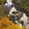 Rogie falls in autumn. Highland, Scotland. October.